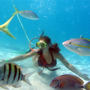 Key West Snuba