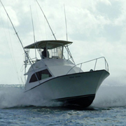 Things to do in key west tours and activities for Deep sea fishing key west