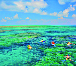 Choosing the Right Key West Snorkeling Tour
