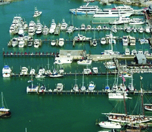 The Key West Historic Bight Marina