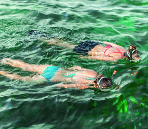 Fabulous Key West Snorkeling and Diving Experiences